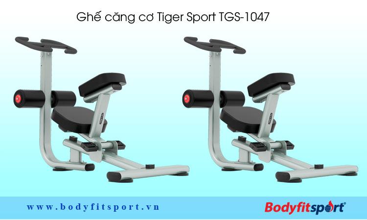 Ghế căng cơ Tiger Sport TGS-1047