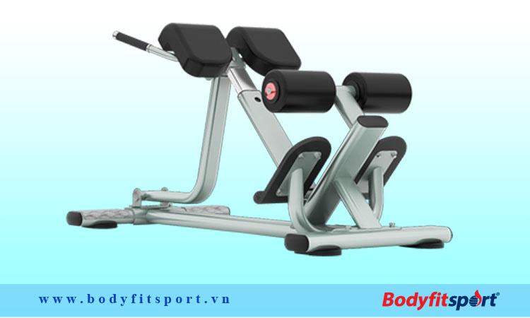 Ghế tập cơ lưng và tập cơ hông Tiger Sport TGS-1042